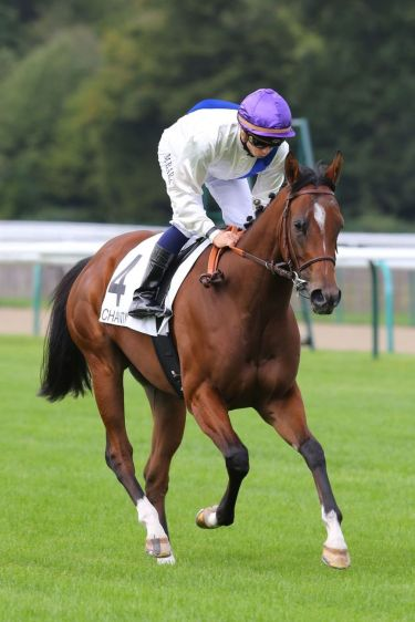 Lundi 21 Septembre 2015;Chantilly;PRIX ECLIPSE - G3;Mickaël BARZALONA;Philippe SOGORB;Gérard AUGUSTIN-NORMAND;SCOOPDYGA - COSTABADIE Pierre