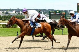 Mercredi 06 Juillet 2016;Deauville;PRIX BLUSHING GROOM;Cristian DEMURO;Maxime GUYON;Philippe SOGORB;Gérard AUGUSTIN-NORMAND;ALEYRION BLOODSTOCK LTD, L. BAUDRON;SCOOPDYGA - DYGA Laurent